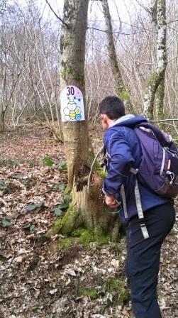 Trailauffargisw2
